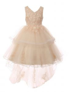 Big Girls Champagne Lace Applique Sequin Tulle Junior Bridesmaid Dress 8-12