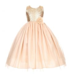 Little Girls Champagne Corsage Sequin Shiny Tulle Occasion Dress 2-6