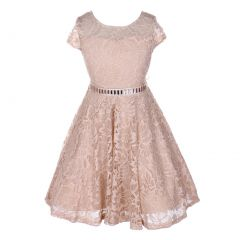 Little Girls Champagne Lace Stone Belt Special Occasion Skater Dress 2-6