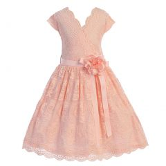 Little Girls Blush Flower Border Stretch Lace Special Occasion Dress 2-6