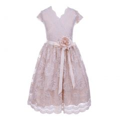 Little Girls Champagne Flower Border Stretch Lace Special Occasion Dress 2-6