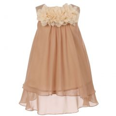 Kids Dream Little Girls Champagne Mesh Flowers Chiffon Special Occasion Dress 2