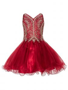 Little Girls Burgundy Crystal Adorned Tulle Elegant Christmas Dress 4-6