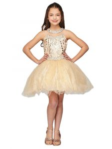 Girls Multi Color Illusion Neck Rhinestone Party Junior Bridesmaid Dress 4-16