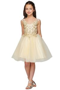 Girls Multi Color V Neck Beaded Tulle Short Junior Bridesmaid Dress 4-16