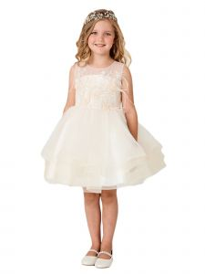 Little Girls Champagne Illusion Neck Lace Tulle Overlay Flower Girl Dress 2
