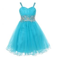 Little Girls Jade Stone Encrusted Pleated Tulle Party Dress 2-6