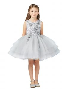 Tip Top Kids Little Girls Silver Lace Layered Tulle Pageant Easter Dress 2-6