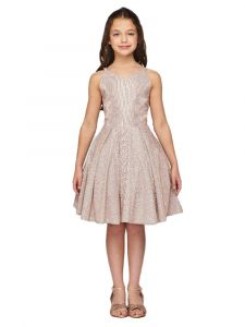 Girls Multi Color Glitter Metallic Double Strap Junior Bridesmaid Dress 4-14