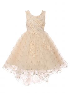 Big Girls Champagne Rhinestone Sequin Embroidered Junior Bridesmaid Dress 8-12