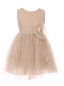 Big Girls Champagne Organza Floral Accent Lace Tulle Flower Girl Dress 8-10