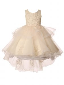 Little Girls Champagne Pearl Applique Hi Low Elegant Christmas Dress 2-6