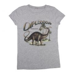 Boys Gray Diplodocus Dinosaur Print Short Sleeve Cotton T-Shirts 6-16