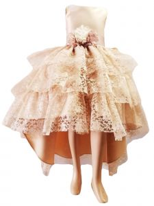 Little Girls Champagne High Low Lace Flower Special Occasion Dress 2-6