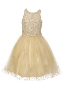 Cinderella Couture Big Girls Champagne Beaded Short Tulle Christmas Dress 8-20