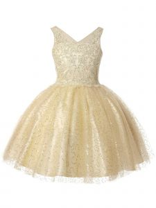 Big Girls Champagne V-Neck Embroidered Beaded Party Flower Girl Dress 8-16