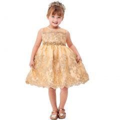 Big Girls Champagne Flower Embroidery Ribbon Special Occasion Dress 8-14