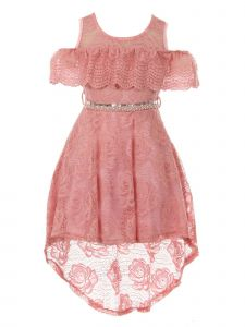 Just Kids Little Girls Rose High-Low Floral Lace Overlay Flower Girl Dress 4-6