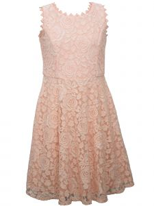 Bonnie Jean Big Girls Pink Sleeveless Roses Lace Skater Dress 7-16