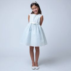 Sweet Kids Little Girls Blue Embroidered Organza Easter Occasion Dress 2