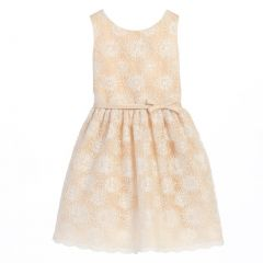 Sweet Kids Little Girls Champagne Flower Embroidered Special Occasion Dress 2-6