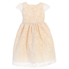 Sweet Kids Big Girls Champagne Floral Embroidered Junior Bridesmaid Dress 7-16