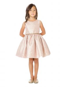 Sweet Kids Little Girls Champagne Ornate Imperial Brocade Christmas Dress 2-6