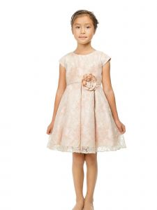 Sweet Kids Little Girls Blush Sage Floral Vintage Lace Easter Dress 2-6