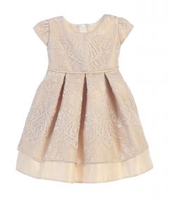 Sweet Kids Baby Girls Champagne Vintage Lace Pleated Occasion Dress 6-24M