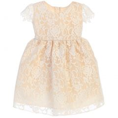 Sweet Kids Baby Girls Champagne Floral Embroidered Flower Girl Dress 6-24M