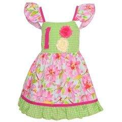 Sophias Style Exclusive Baby Girl Pink Green Floral Check Birthday Dress 18M