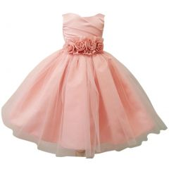 Baby Girls Blush Rosette Embellished Waist Overlaid Flower Girl Dress 6-24M
