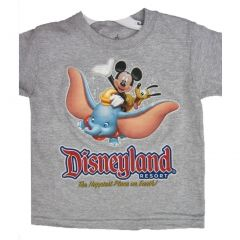 Disney Little Boys Grey Cartoon Disneyland Inspired Print T-Shirt 2T-4T