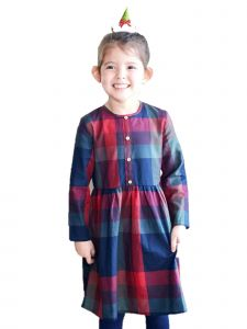 Bunny n Bloom Big Girls Red Blue Fit And Flare Cotton Plaid Dress 7-12 Years
