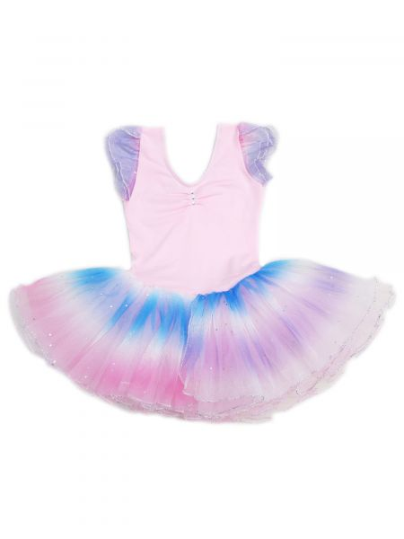 Wenchoice Girls Pink Rainbow Rhinestone Silver Trim Ballet Dress 24M-6